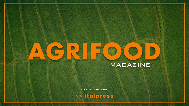 Agrifood Magazine – 29/9/2021
