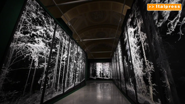 Re-Coding, a Roma la mostra personale di Quayola