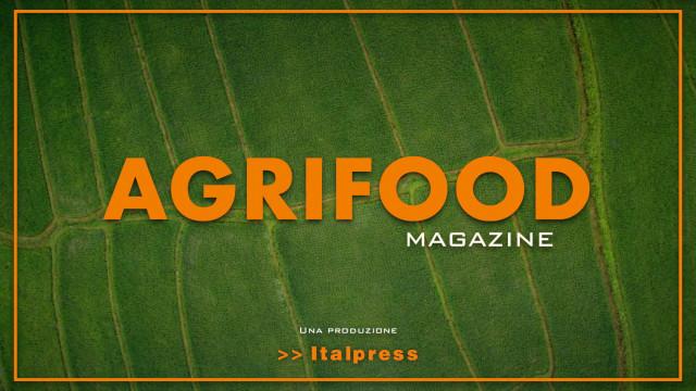 Agrifood Magazine – 16/9/2021